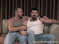 Hot Bears In A Nice Room