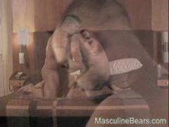 Hot Bears In A Nice Room