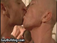 Very Extreme Gay Ass Fucking And Cock Sucking Action 16 By GayBulldog