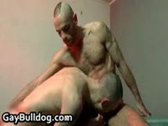 Very Extreme Gay Ass Fucking And Cock Sucking Action 35 By GayBulldog
