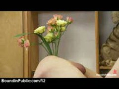 Gay Butt Plugged With Bunch Of Roses In Flower Shop
