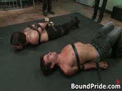 Brenn, Josh And Dylan Hunky Studs Extreme BDSM Gay Porn 1 BoundPride