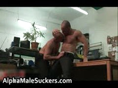 Carlo Cox And Luca Falcini In Super Steamy Gay Porn Suck And Fuck 5 By AlphaMaleSuckers