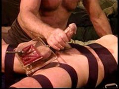 CBT Young Stud With Bull Cock Gets Balls Crushed With My Vise.