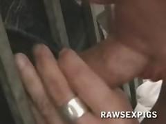 Stud Hot Blowjob And Raw Fuck