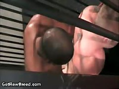 Kamrun And Travis Turner In Amazing Gay Sex Fucked And Sucked 11 By GetRawBreed