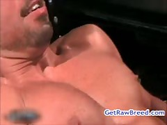 Kamrun And Dominik Rider Fucked And Sucked 11 By GetRawBreed