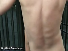 Igor Lucas And Danny Lopez Hard Core Homosexual Fucks And Sucks 2 By GetRawBreed