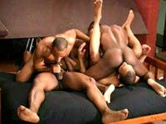 Bangin' Orgy