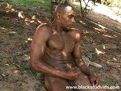 Black Stud Alan