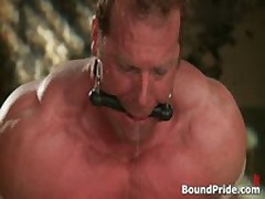 Buffed Dude Blindfolded And Bound Gay BDSM 4 By BoundPride