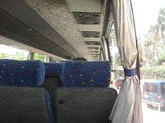 Wanking In Bus