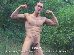 Straight Muscle Guido Tony