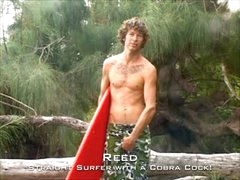 Hung Surfer Reed