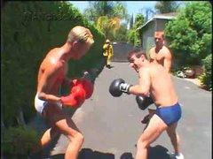 Boxers, Briefs & Firemen'S Jocks 2