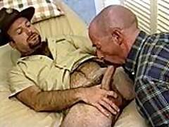 Burly Bears Get Hard Dick