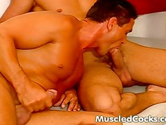 Muscled Studs Handle Big Cocks