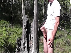 Stump Cum