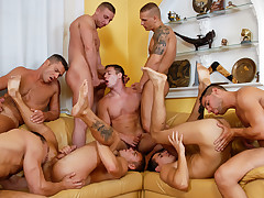 Breeding Party #01