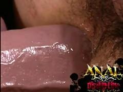 Dildo Up The Ass
